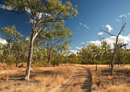 DomaCom Rural Road Australia